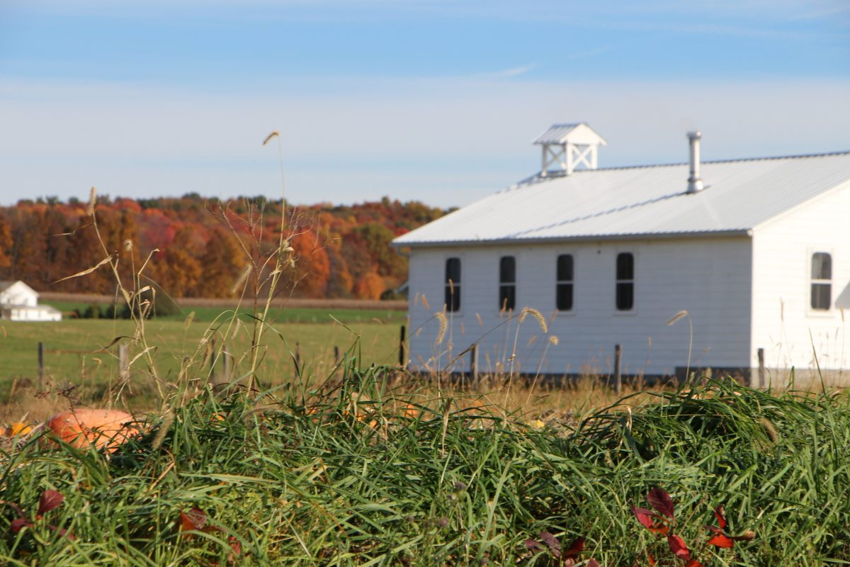 Stock photo of an Amish schoolhouse in a field with trees in fall colors in the background.